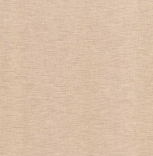 Рулонная штора Mini. Анже Светло-серый