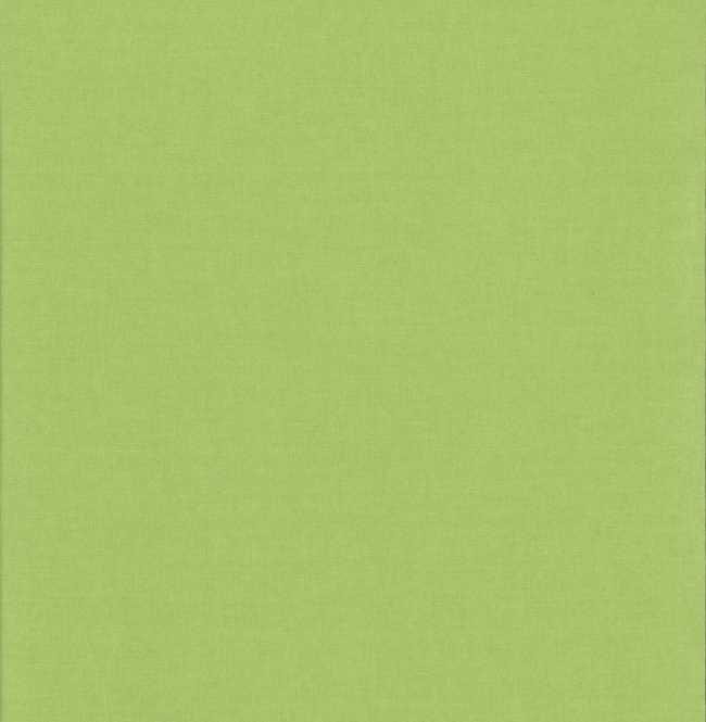 Рулонная штора Mini. Карина блэкаут Светло-зеленый