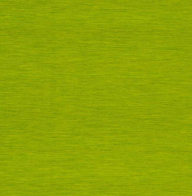 Рулонная штора Mini. Корсо Зеленый