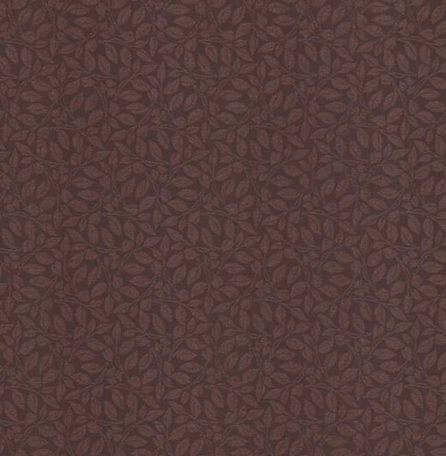 Рулонная штора Mini. Лэйси Коричневый