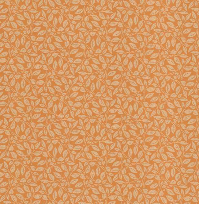 Рулонная штора Mini. Лэйси Оранжевый