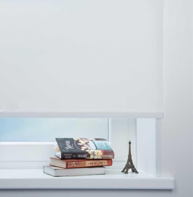Рулонная штора Mini. Сильвер скрин Белый