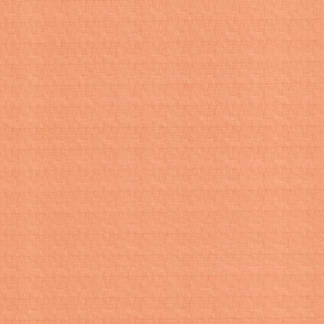 Рулонная штора Тэффи Розовый